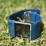 Fitbit travelling statistics