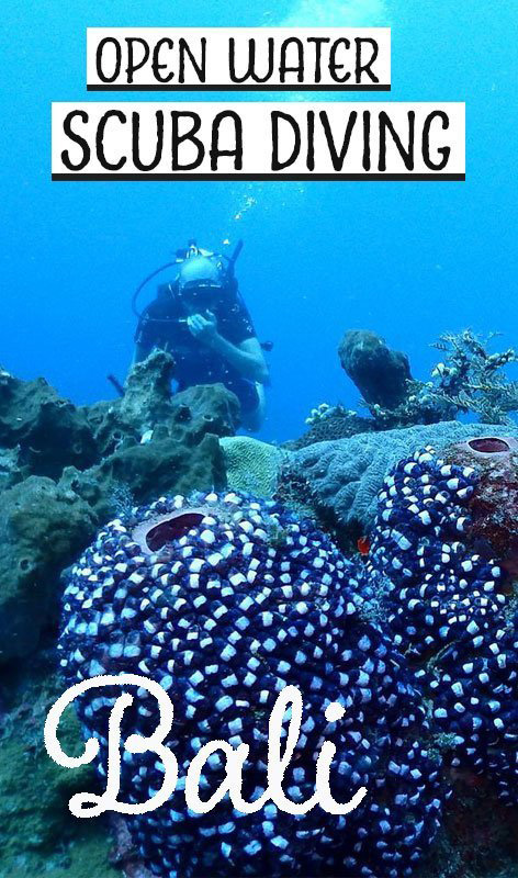 We took our PADI Open Water scuba diving course in Amed, Bali, with Bali Reef Divers. This is the story of our experience.