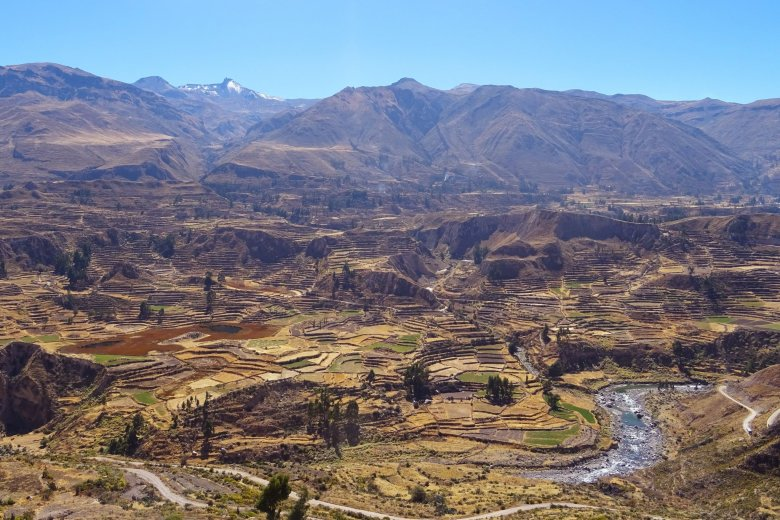 Colca Canyon trek: looking out on the agricultural terraces from Achoma viewpoint