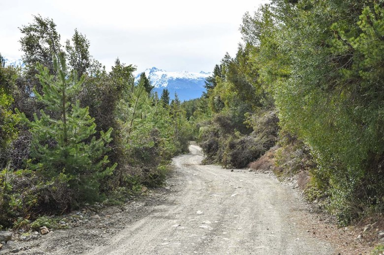 Looking back down the zig-zagging gravel path that leads from El Mirador hostel to the trailhead