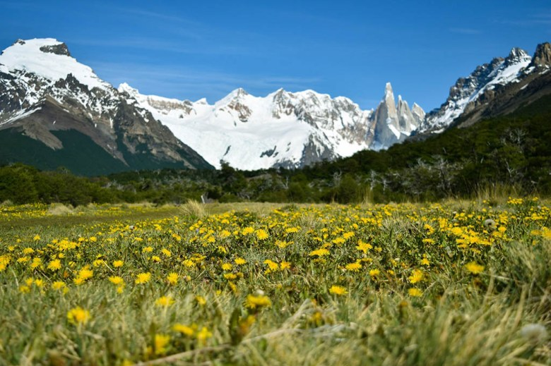 Look out behind you: there are several great views back to Cerro Torre on the return hike to El Chaltén