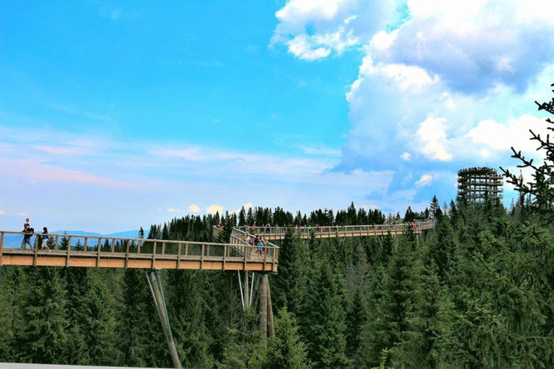 Bachledka Treetop Walk Slovakia