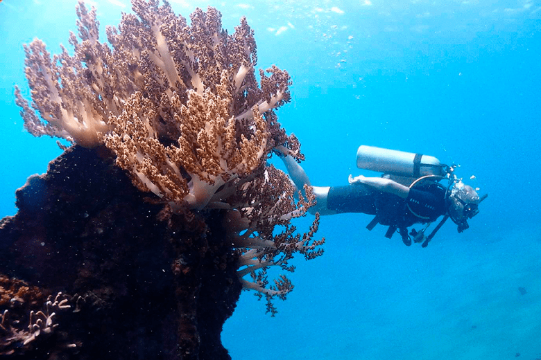Check that adventure activities like scuba diving are covered on your travel insurance policy
