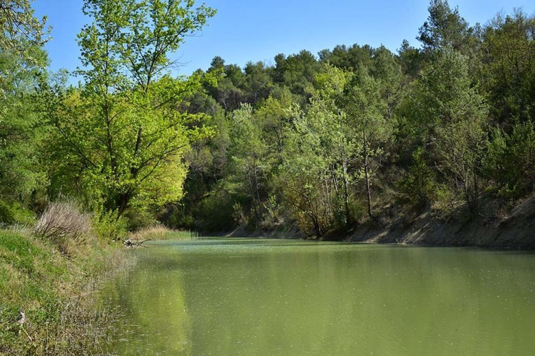 A short walking trail from Camping Pian Di Boccio leads through woodland to a lake
