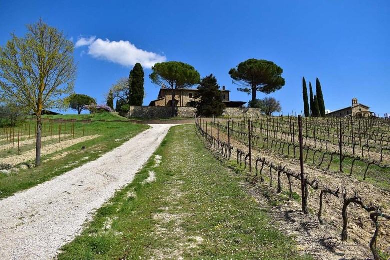 Decugnano Dei Barbi is built on the grounds of a 13th century hilltop village