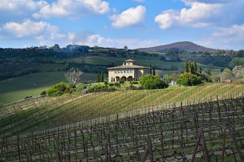 Decugnano dei Barbi is set on the site of a 13th century hilltop village where monks once produced wine