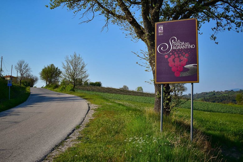 La Strada Del Sagrantino is a trail of food, wine and local culture in Montefalco