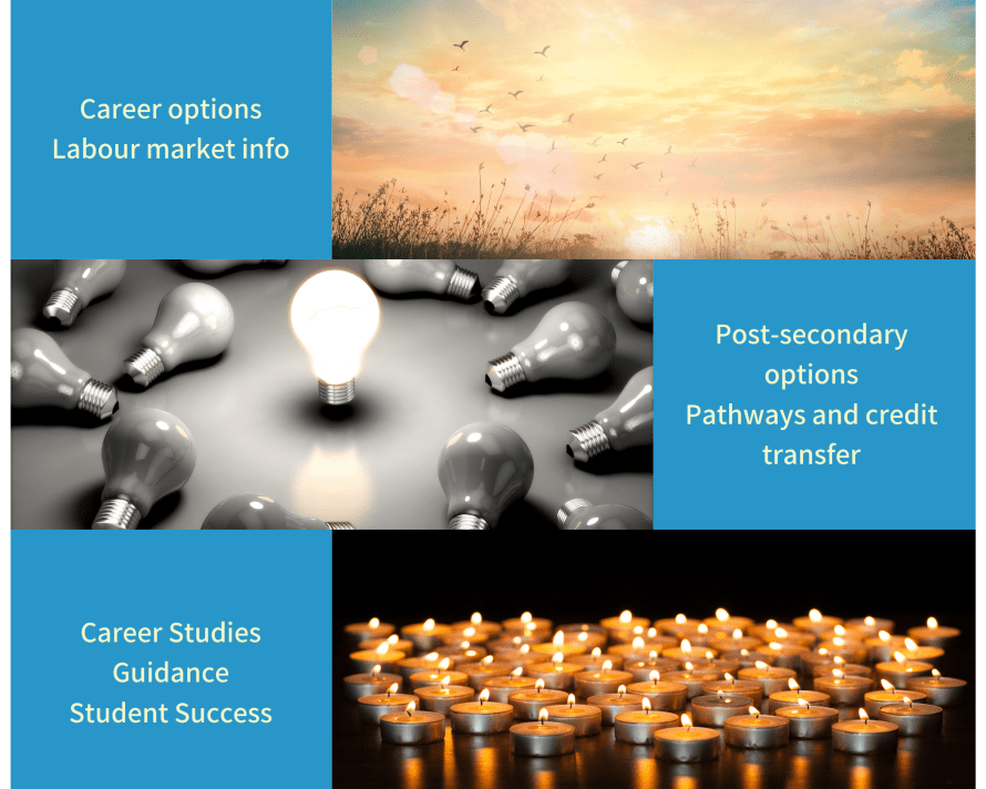 Career options, labour market info, post-secondary options, pathways and credit transfer, career studies, guidance, student success