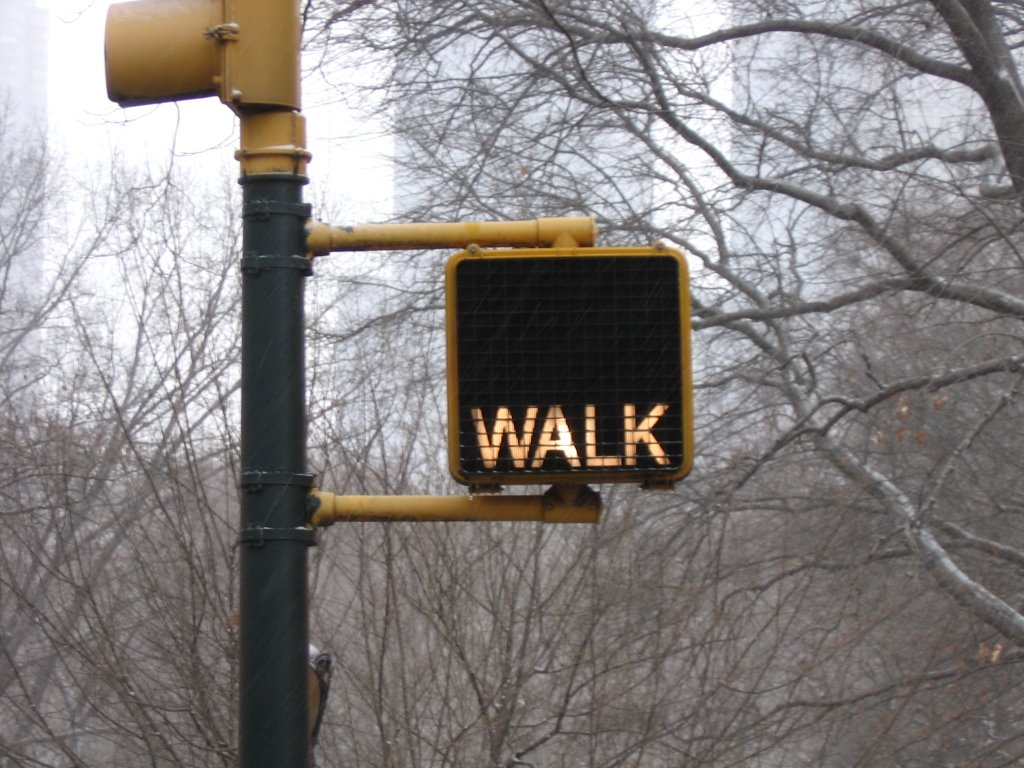 Walk Sign – Career Linguist
