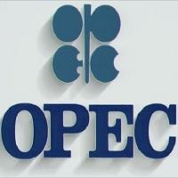 OPEC Recruitment 2021, Careers & Job Vacancies (8 Positions)