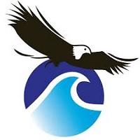 Bid & Tender Officer at Skyshore Group Limited