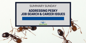 Summary Sunday: Addressing Pesky Job Search and Career Issues