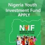 nyif application form