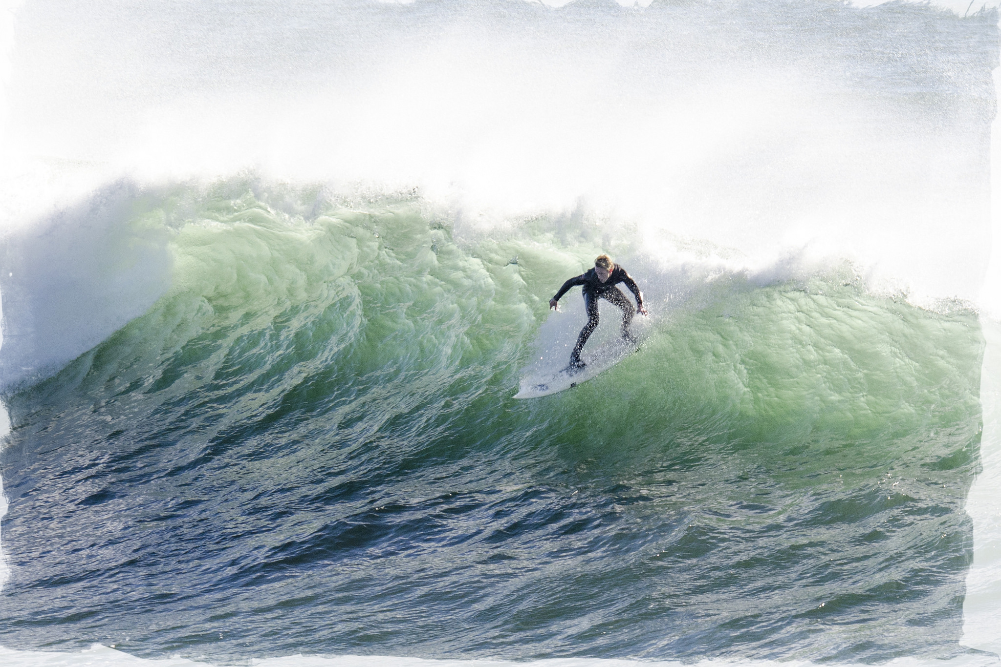Jump on your career surfboard  ride the wave  Executive Resume Writing Service