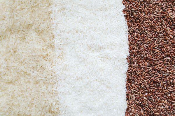 la proteina de arroz proviene del arroz (Oryza Sativum)