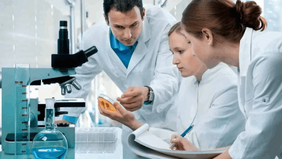 What does a medical laboratory scientist do?
