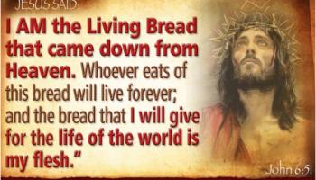 Renungan katolik kamis 22 april 2021 : Bacaan Dan Renungan Kamis 09 Mei 2019 Paskah Iii Careka Bacaan Renungan Katolik