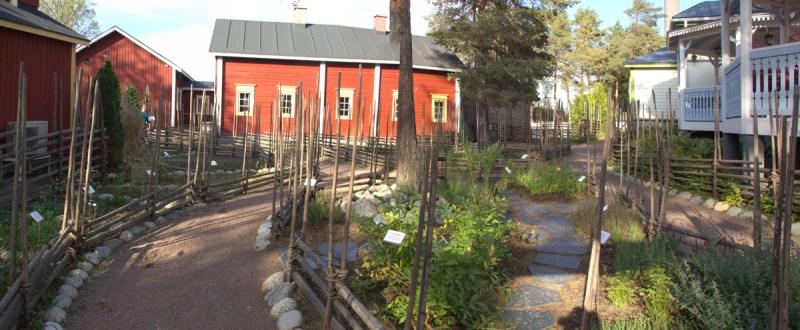Koiramaki apteekin puutarha