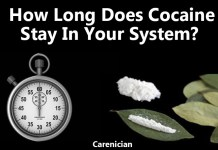 how long does cocaine stay in your system or urine
