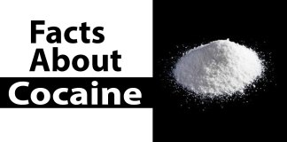 facts about cocaine