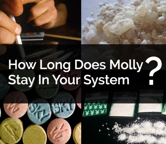 How Long Does Molly Stay In Your System, How Long Does Molly Stay In Your urine, How Long Does Molly Stay In Your blood, How Long Does Molly Stay In Your Saliva