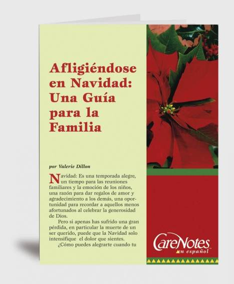 Grieving at Christmas: A Family Guide Spanish Version
