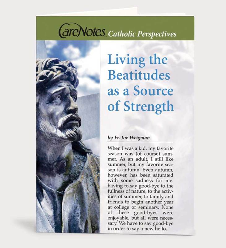Living the Beatitudes as a Source of Strength
