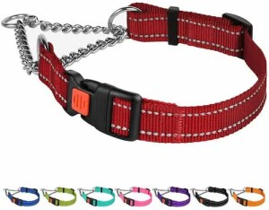 CollarDirect Reflective Dog Collar with side release buckle