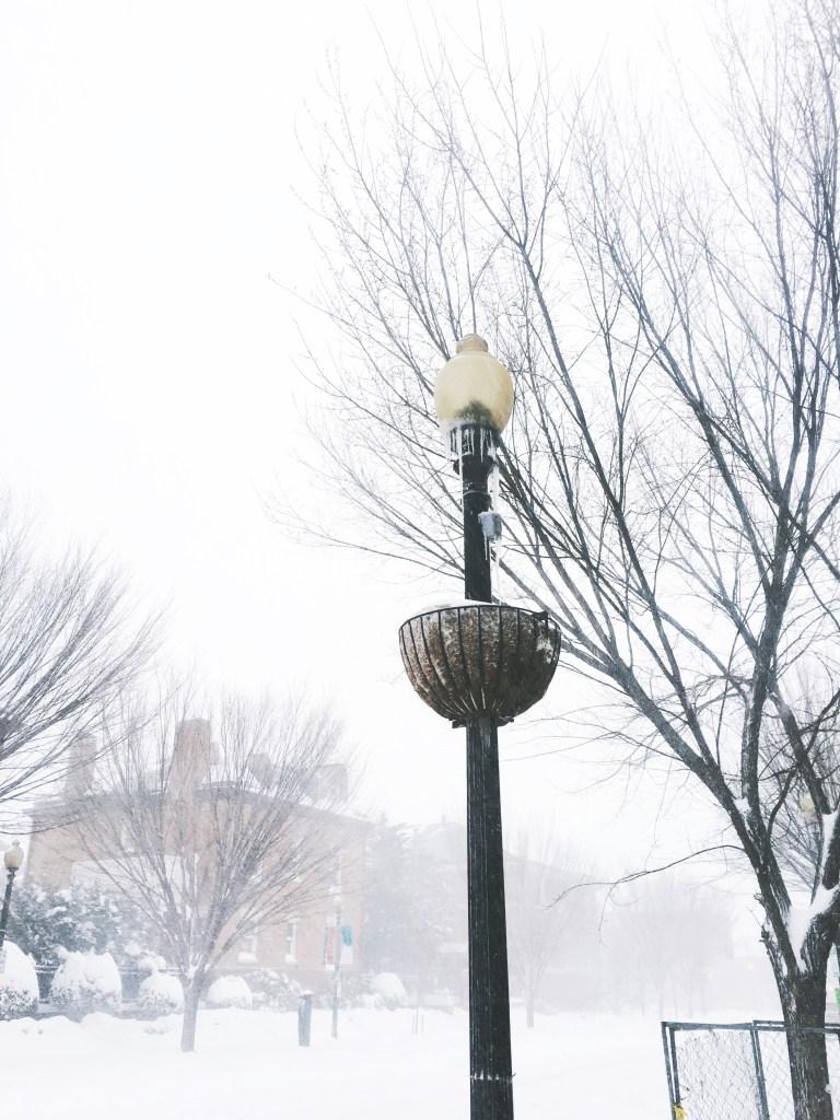 blizzard-19