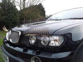 BMW X5 with Gold eyelashes for cars