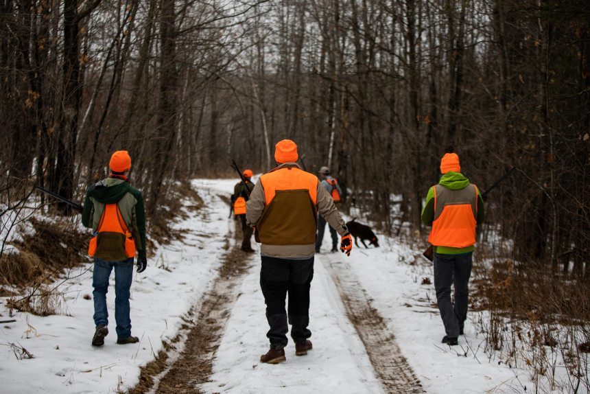 Try Upland Minnesota Grouse Outing