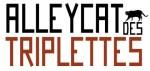 Alleycat des Triplettes & festival de choses cyclistardes, insolites et urbaines