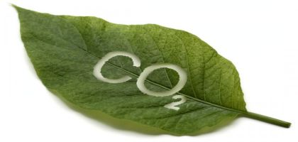 co2-nature