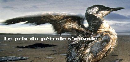 Cours du pétrole, profits records et catastrophes écologiques