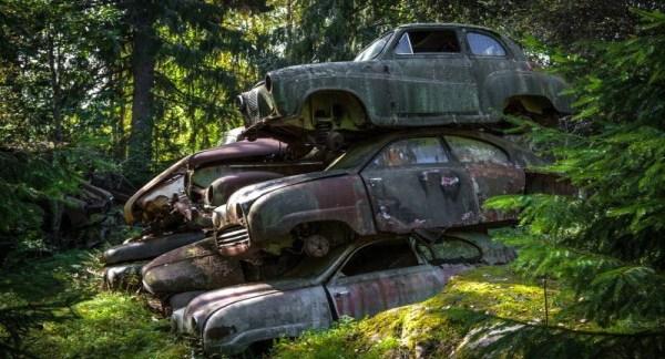 un-vieux-cimetiere-de-voitures-en-suede