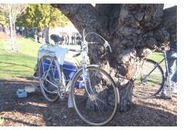 Impromptu bike parking at the Seattle Bike Swap