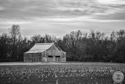 Old Winter Barn 1 black n white WM