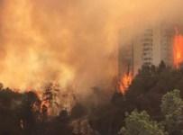 kebakaran besar Israel