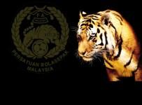 Ranking Harimau Malaysia