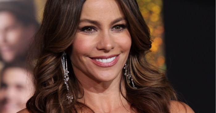 What Professional Women Can Learn from Sofia Vergara about Leadership
