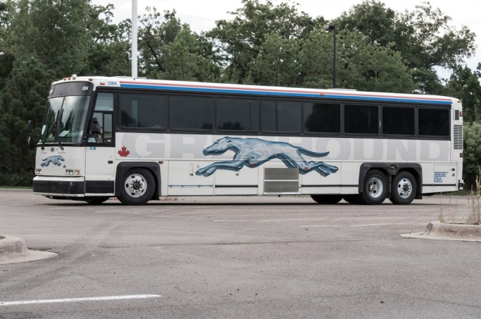 Greyhound to stop allowing immigration checks on buses