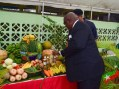 St. Kitts and Nevis Government Promotes Alternative Sectors for Persons to Earn a Living During COVID-19