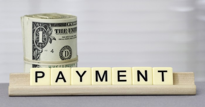 Pause on Making Loan Payments Has Improved Credit
