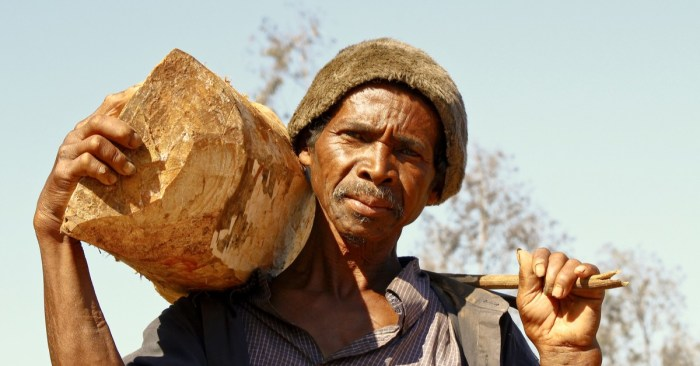 Madagascar on the Brink of Climate Change-Induced Famine