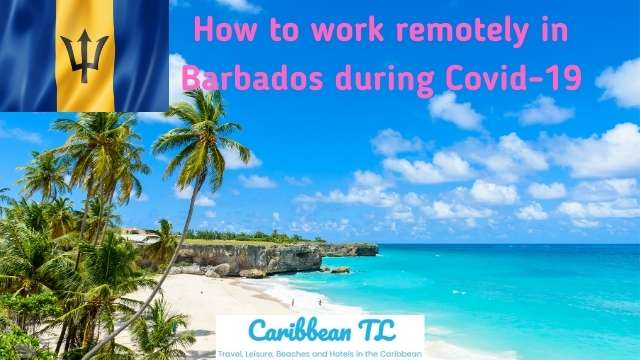 How to work remotely in Barbados during Covid-19