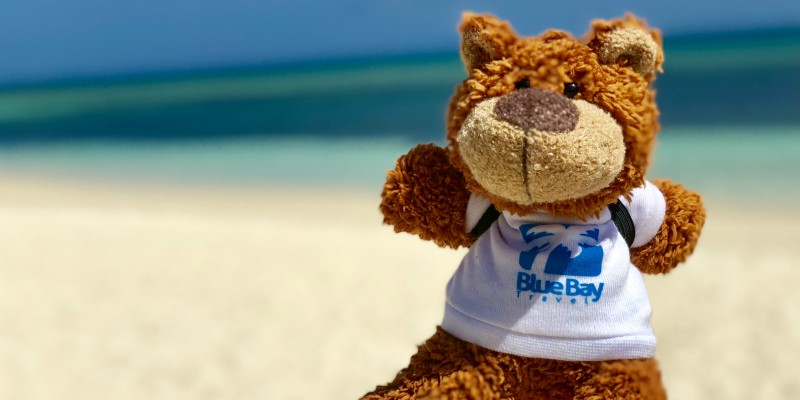 Bayley from Blue Bay Travel