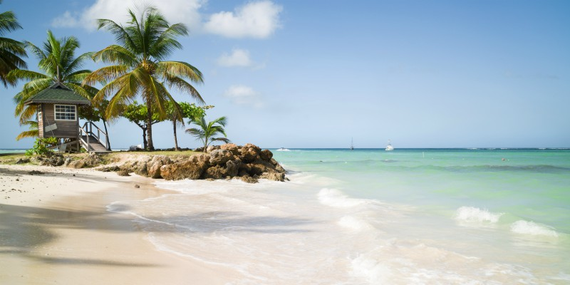 Discover Tobago with Caribbean Warehouse with our top Tobago excursions