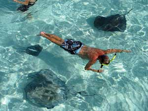 Caribbean Shore Tours the Shore Excursions Guide in the Caribbean
