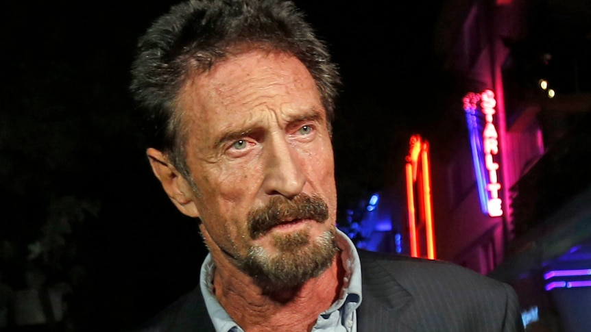 McAfee creator charged over $16