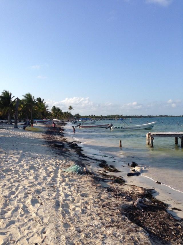 Punta Allen, posible referente de electrificación limpia en el Caribe Mexicano